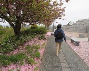 月イチの神社とお墓参り
