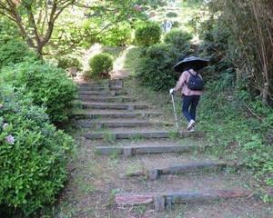 新津さつき山公園に行って来ました