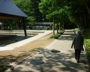 母ちゃんと弥彦神社