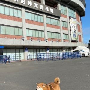 秋の遠足(1)〜オリンピックミュージアム