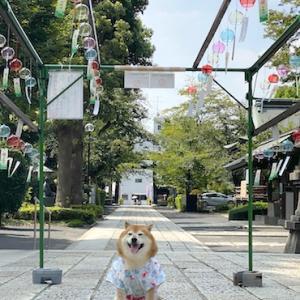 松陰神社の風鈴
