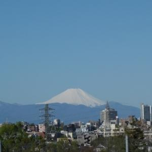 富士山と四つ葉のクローバー