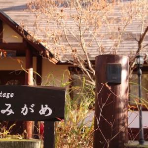 お宿とメタセコイヤ並木 ~京都・滋賀旅行~