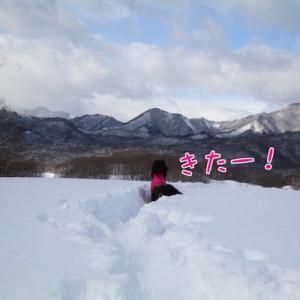 ハルちゃんと雪遊び再び