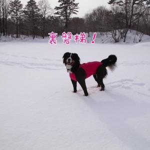 みんなでスノーシュー ~裏磐梯雪旅行~