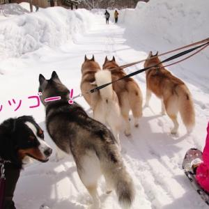 2日目もたっぷり雪遊び ~福島雪旅行~