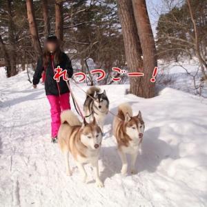 五色沼ハイキング ~福島雪旅行~