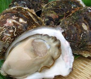 牡蠣の健康作用