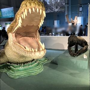 国立科学博物館 特別展「大地のハンター展」