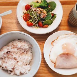 朝ごはんと昼ごはん