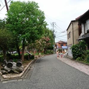 鳥取市にもあるお洒落系カフェでランチ!! Cafe-nee(鳥取市瓦町)の巻/第2,708歩