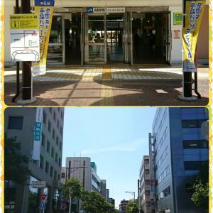 Newオープンのカレー店は...ヤルやん♪ PARAKEET(鳥取市扇町)の巻/第2,710歩