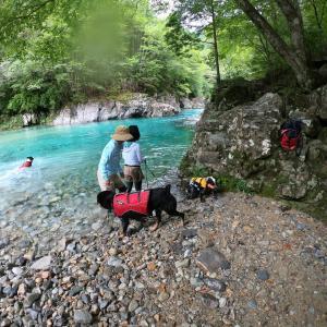 夏の終わりの冷たくて青い川遊び!