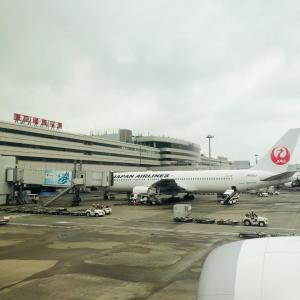 七だし屋@羽田空港国内線