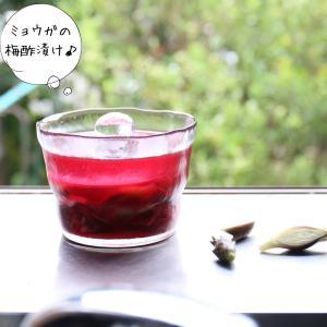 きれい色のミョウガの梅酢漬け