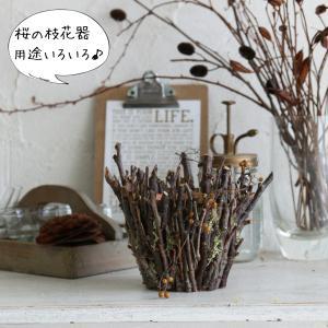 桜枝の花器 用途6種