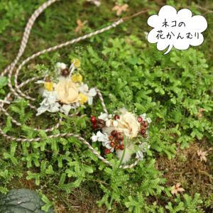 WS:ネコの花かんむり レポート