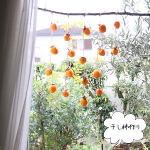 秋の手仕事:干し柿を作りました