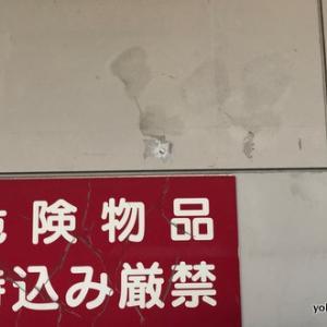 金沢文庫駅にタツノオトシゴがいます。
