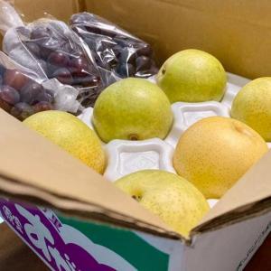須金の葡萄と梨