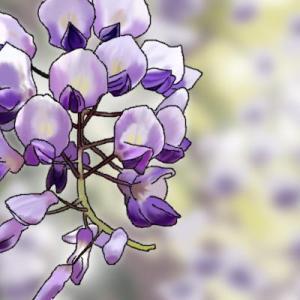 「藤の花」と「彼岸花」、鬼滅の刃の調和した関係