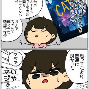 ちーと噂のキャット空中三回転~本編~