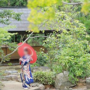 『日本文化の継承』より、大切にしたいもの