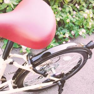 自転車スリム化②
