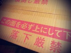 ■○○を箱×2つ買い!!