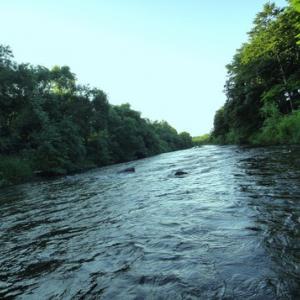 もっとシュールに消えてくれ.上川の川