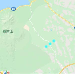 支笏湖帰りにヒグマが出没