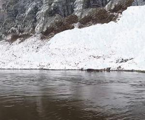 おじいちゃんが造った愛犬の靴下 尻別川の冬ニジマス