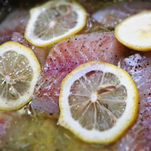 ヒトサラ 追加は 海の幸 白身の魚に 生めかぶ