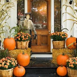 今年のハロウィンはどう過ごされますか?