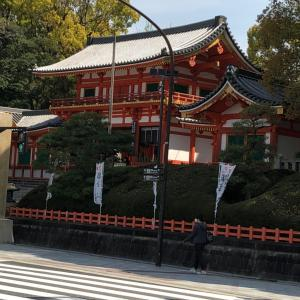 京都殆ど観光客いない