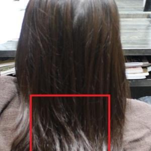 シャンプーとトリートメントを変えると髪が収まる?