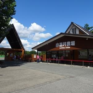 十和田八幡平国立公園を一人静かに巡る旅(小岩井農場編)