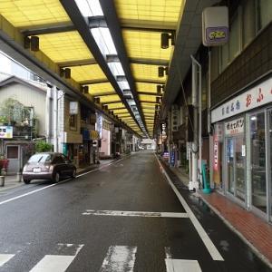 山と川を楽しみ尽くせ、徳島…阿波池田、脇町編