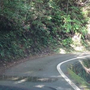 山と川を楽しみ尽くせ、徳島…上勝編
