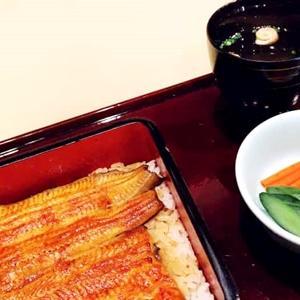 明日からのダイエット開始に備え、神楽坂の鰻で白米と別れの宴。