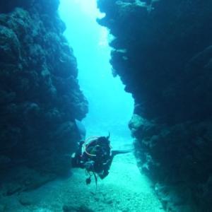 喜屋武岬でのんびりと ~糸満近海ガイド付きボートダイビング(ファンダイビング)~