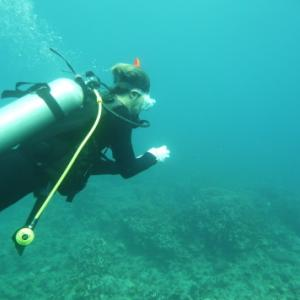 仕上げの海洋実習 ~NAUIスクーバ・ダイバー・コース~
