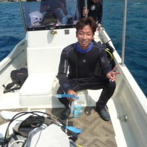 青い世界を満喫 ~糸満近海体験ダイビング~