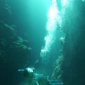約20年ぶりからのスタート ~糸満近海ガイド付きボートダイビング(ファンダイビング)~