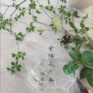 月草sousow「紫陽花の会」2019