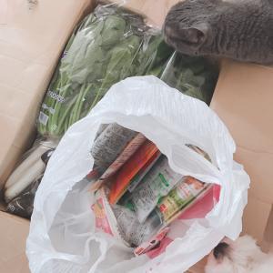 ママから定期便(野菜)