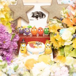 ビンゴのウチの子記念日