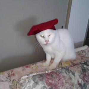 帽子を被ったウニヴェルソ