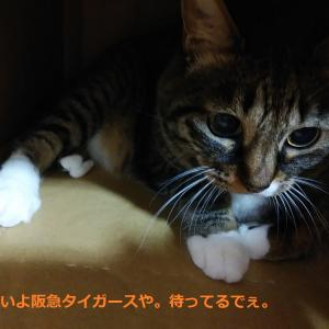 阪急阪神ホールディングス 角総帥が大粛清を宣言・・今日の桜井はボッコボコに