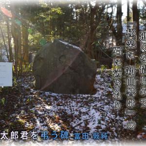 「弘田龍太郎君を弔う碑」
